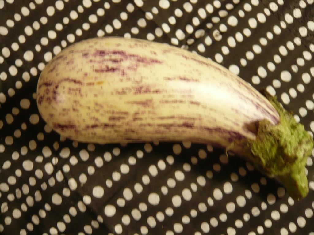 whiteegg-plant