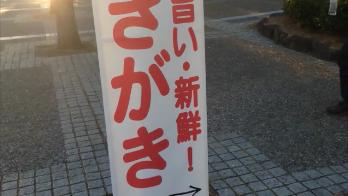 八景島駅前旗矢印下